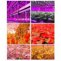 Growish Barra LED 3x36W 108W Coltivazione / Crescita Piante