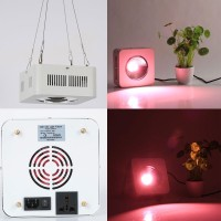 Growish Lampada Professionale COB LED 1x200W per Coltivazione / Crescita Piante Indoor